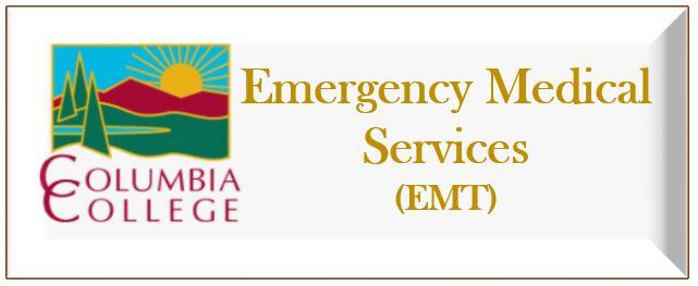 EMS Link