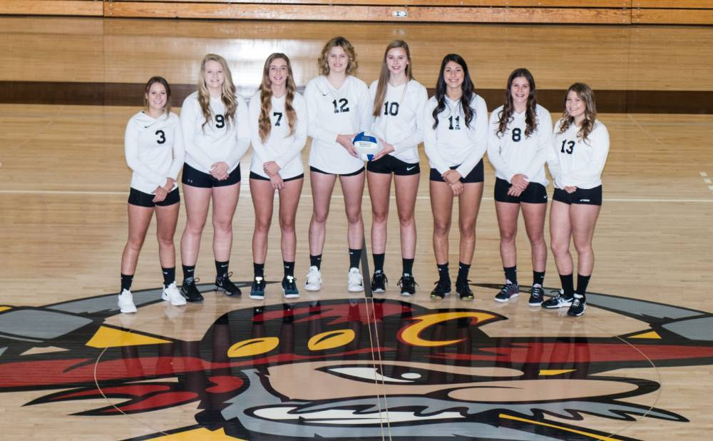 2018 Women's Volleyball